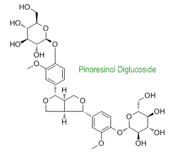 pinoresinoldiglucoside