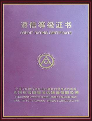 Credit Rating Certificate Cover.jpg