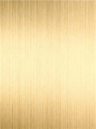 纹 钛 镀金 黄色 黄色 شعري تي-Gold.jpg