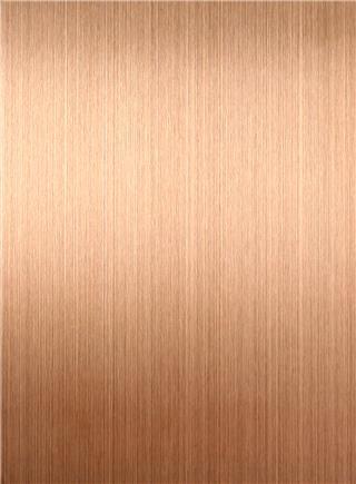 纹 钛 镀 玫瑰 金色 金色 شعري تي-غولد Rose.jpg