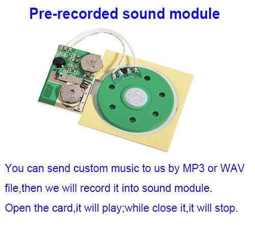 Music chip.jpg
